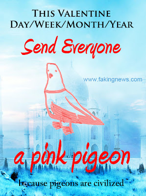 The Pink Pigeon Campaign