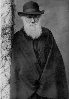 Darwin esteve cá!