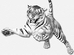 Berwajah Harimau Berhati Singa!