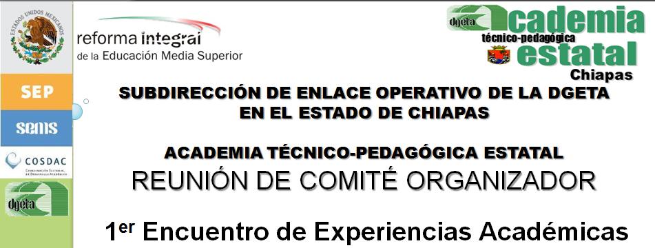 1er. Encuentro de Experiencias Académicas - DGETA