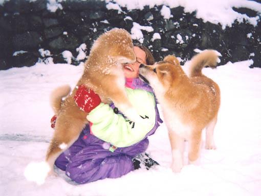 Ca, c'est du bonheur partagé: Allison ,Yumi 3 mois 1/2, Oosaka 4 mois