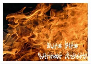 SURE FIRE WINNER AWARD