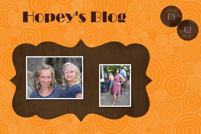 Hopey's Blog