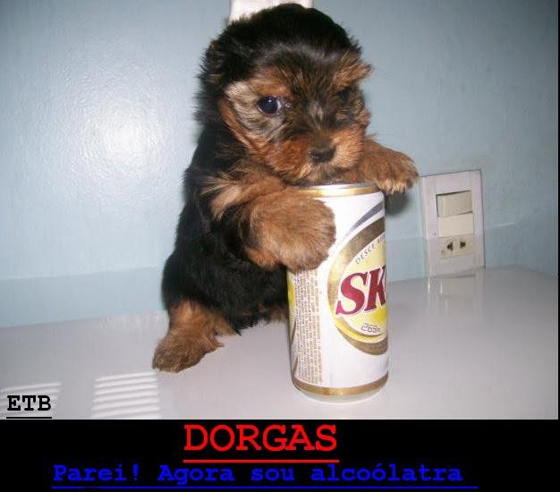 Dorgas. Dorgas+alcolatra