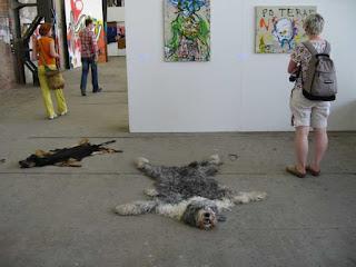 Perros usados como alfombras 20