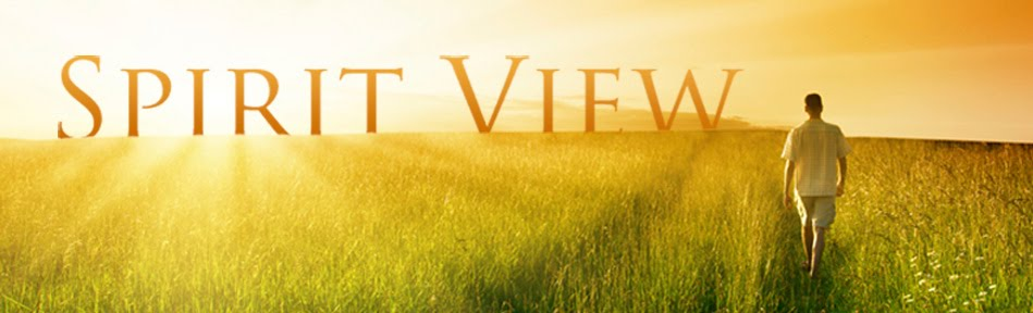 Spiritview