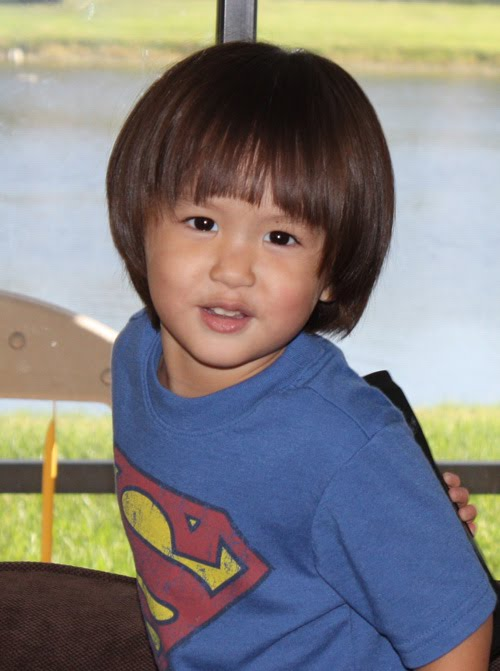 Dora Haircut Day Image Collections Haircuts For Men And