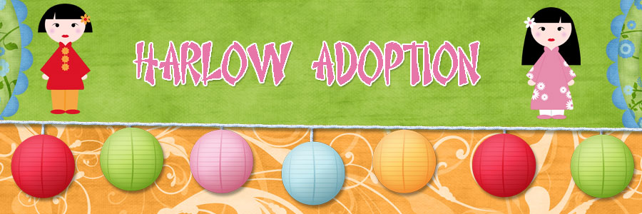 Adoption Auction