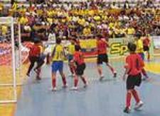 FINAL DEL II MUNDIALITO 2006