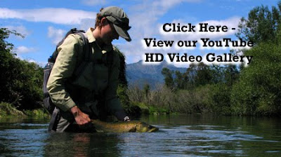 You Tube HD Video Gallery
