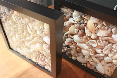 It 39 s the little things that make a house a home simple - Things to do with seashells ...