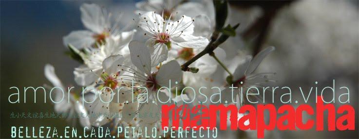 mamapacha