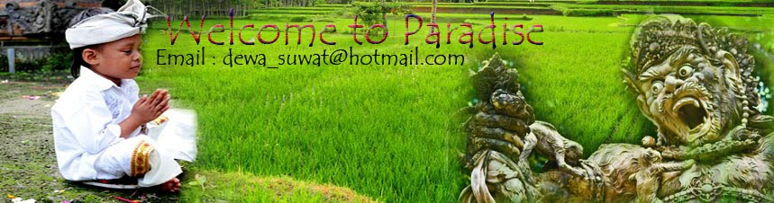 Bali Driver | Rent Car | Tour Driver & guide