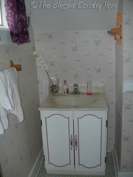 The Blessed Country Mom Tiny Half Bath Before
