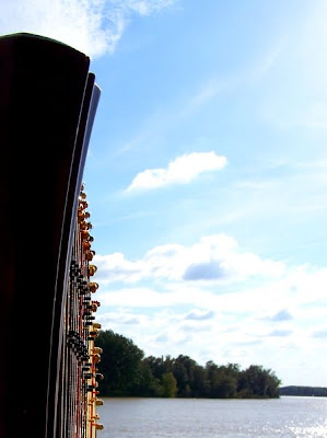 pidic encadrees photographie photoblog amateur bordeaux gironde harpe harpes instrument musique cordes