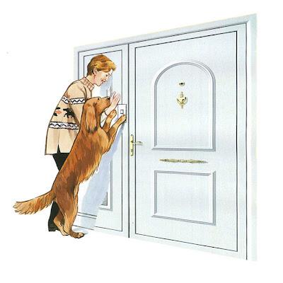Boris husky como ense ar a un perro a tocar el timbre - Timbre para casa ...