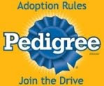 Pedigree Adoption Drive