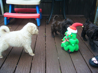 three puppies and a plush animated Christmas tree