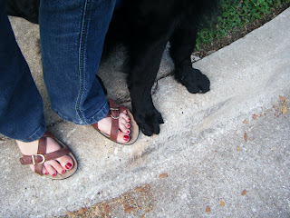 Kind of a funny picture of Petey's and my toes right next to each other at the edge of a curb