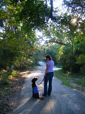 Starting off on our last walk together, Alfie and I are facing away from the camera; he's seated at my side, looking up at me and I'm looking down at him; the evening sun is slanting through the trees