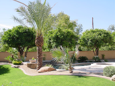 Modern landscape design, home gardens design