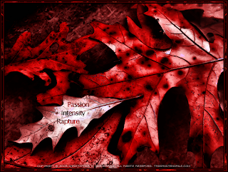 Fallen (I See Red) (c) Copyright 2009 Christopher V. DeRobertis. All rights reserved. insilentpassage.com