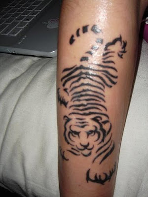 Cool Tiger Tribal Tattoo Temporary Cool Tiger Tribal Tattoo on Arm Picture