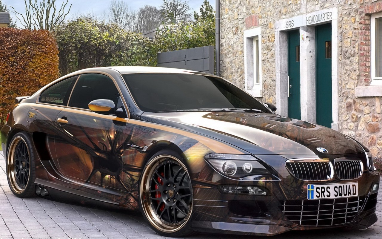 Others bmw car with custom airbrush art car modification for Custom automotive paint