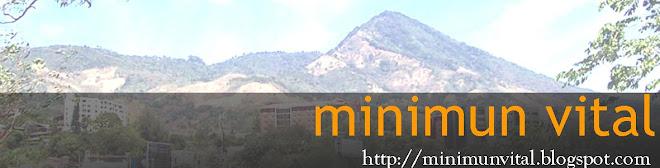 Minimum Vital