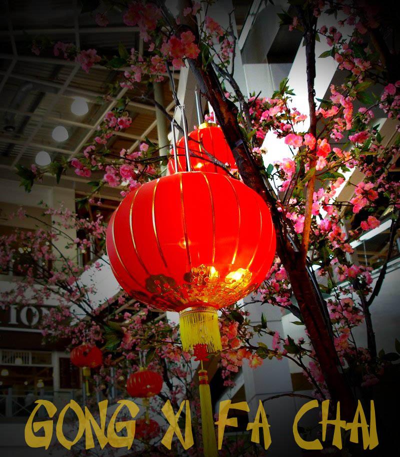 Selamat Tahun Baru Cina 2011