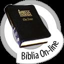 A bíblia  em vários idiomas