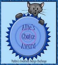Allie's Choice Award