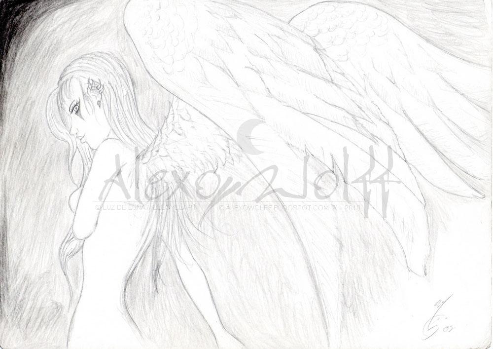 Hojas blancas - dibujo a lápiz [25 de 87] (2005 - Presente)