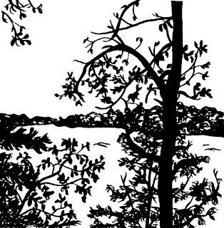 3 Mile Lake, Muskoka