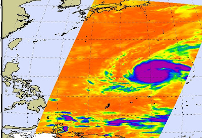 Mirinae now has the developed signature shape of a mature tropical cyclone