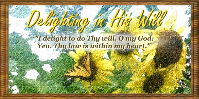 Delighting in His Will
