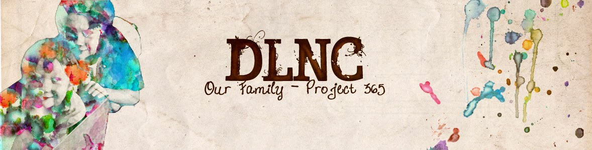 DLNC-Project 365