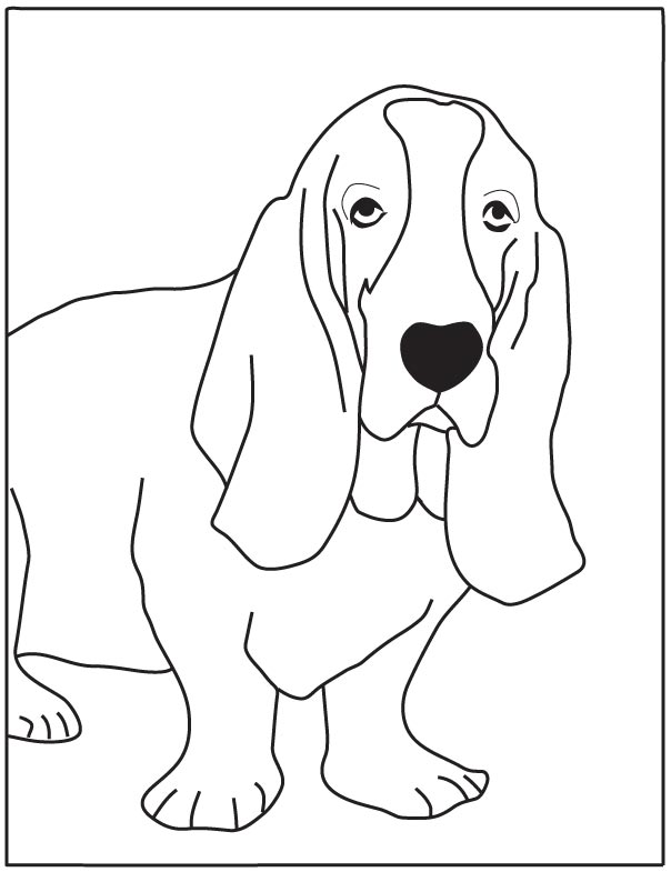 dog basset coloring pages - photo#17