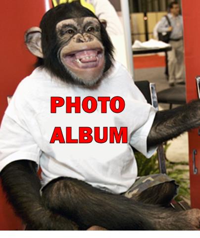 CHIMP PHOTO ALBUM