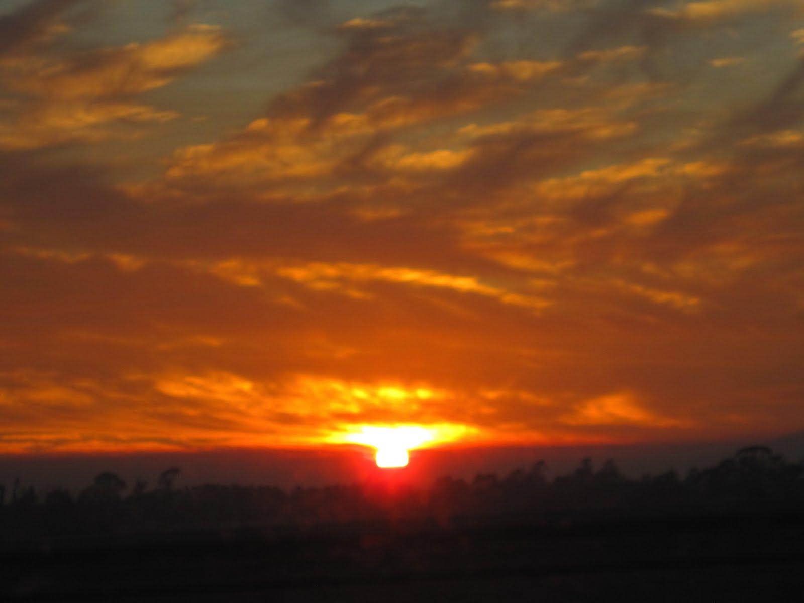 Extension de mis ojos una puesta de sol y una salida de for Puesta de sol