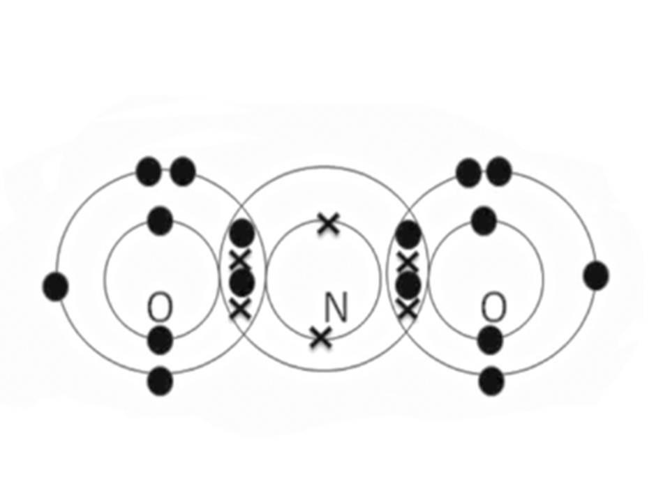 2a2 science blog  feb 8  2011