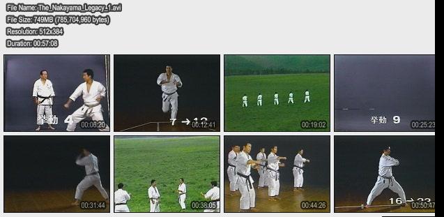 karate tutorial ebook