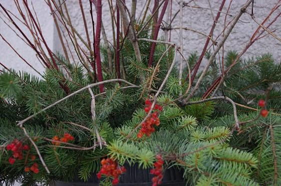 Outdoor Fall Planter Ideas http://thousandsquarefeet.blogspot.com/2010/11/outdoor-holiday-planter-with-branches.html