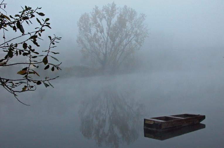 Images simples d'un matin de brouillard