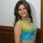 Actress Dharika Celebrity Gallery
