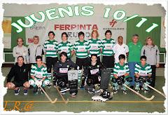 JUVENIS - CAMPEÕES DISTRITAIS 2010/11