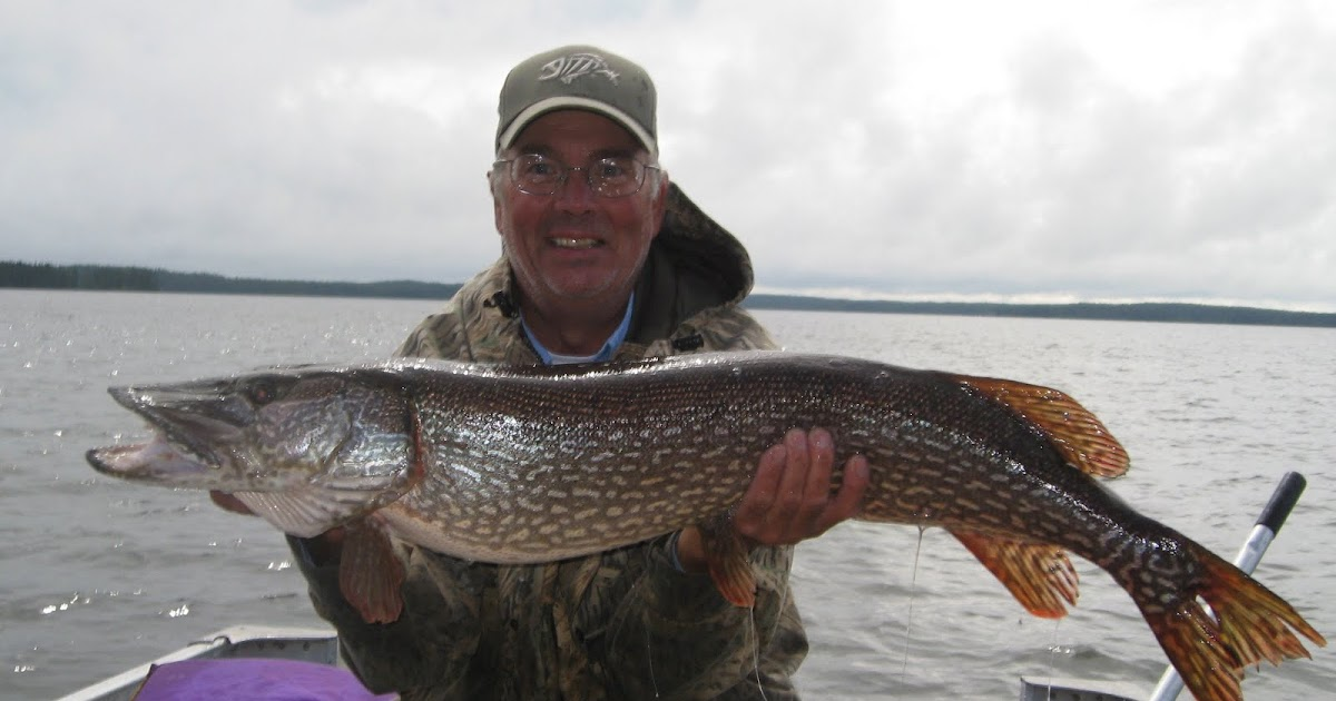 The best fishing in ontario two 40 inch pike for Best fishing in canada