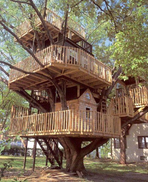 Rachael caringella talk2thetrees my dream house for Best treehouse designs