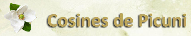 Cosines de Picuni