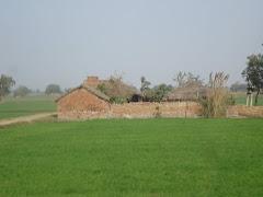 Bhavna's Village